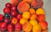 Как сохранить фрукты в домашних условиях